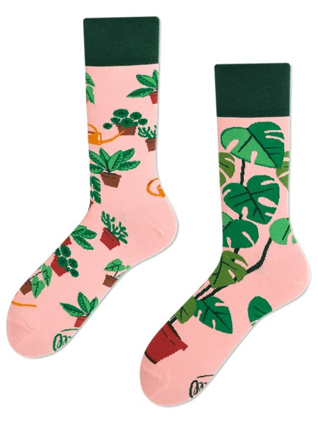 Many Mornings Plant Lover 43-46 Spielzeug